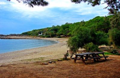 Avsallar Plajı