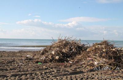 (EN) ALTİD sahilleri temizledi