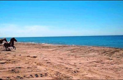 Demirtaş Plajı